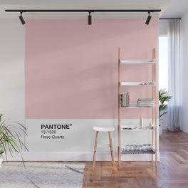 Pantone - Rose Quartz Wall Mural