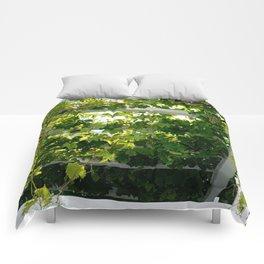 The Vid Comforters