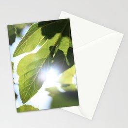 The light fields Stationery Cards