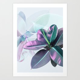 Violet Tropical Plant Art Print