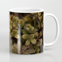 Winter greens Coffee Mug