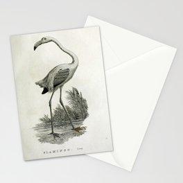 015 Flamingo phoenicopterus ruber Stationery Cards