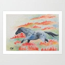 Indian Paintbrush Dakota Horse Art Print