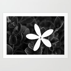 Simple Beauty Art Print