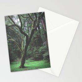 Mossy Womb Stationery Cards