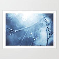 FairyMist Art Print