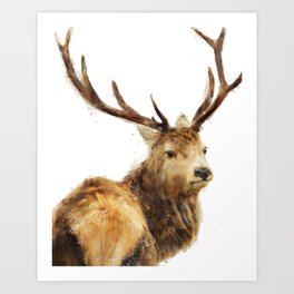 Winter Red Deer Art Print