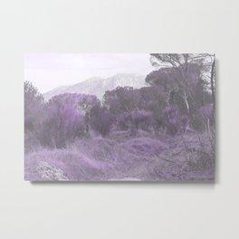 Pastel day VII Metal Print