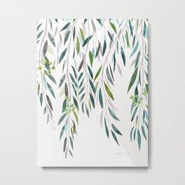 Eucalyptus Drop  Metal Print
