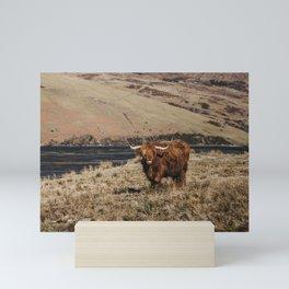 Scottish highland cattle vintage portrait landscap Mini Art Print