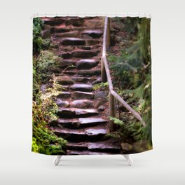 Old Wet Stone Steps Shower Curtain