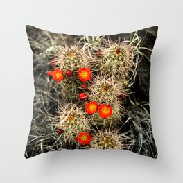Southwest Cactus Flowers Throw Pillow