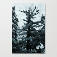 norway Canvas Prints featuring Norway by Destination Norway