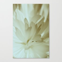 Romantic Flower Retro Vintage Look Canvas Print