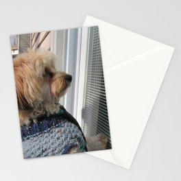 Copper looking for Daddy Stationery Cards