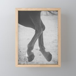 In Flight Framed Mini Art Print