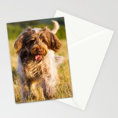 Brown Roan Italian Spinone Dog in Action Stationery Cards