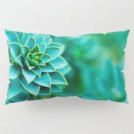 Green Succulent Mandala Pillow Sham
