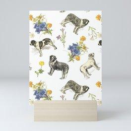 Saint Bernard dogs in the Alpine meadow Mini Art Print