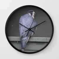 millenium falcon Wall Clocks featuring Falcon by Sarah Shanely Photography