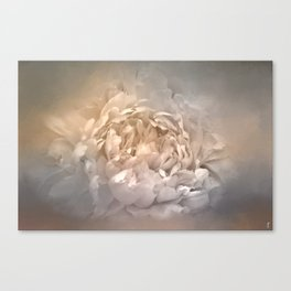 Blushing Silver and Gold Peony - Floral Canvas Print