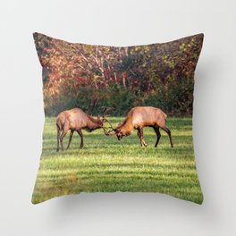 Elk Sparring Great Smoky Mountains Throw Pillow