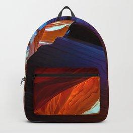 Curvature Backpack