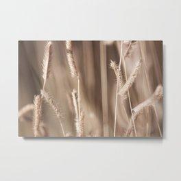 Crops Metal Print