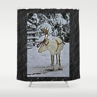 finland Shower Curtains featuring Reindeer in Lapland Finland by Guna Andersone & Mario Raats - G&M Studi