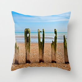 Winchelsea Defences Throw Pillow