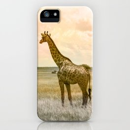 Day Dreaming iPhone Case
