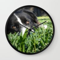 border collie Wall Clocks featuring Thoughtful Border Collie by elledeegee