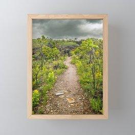 The path of Cerrado. Rocky trail surrounded by the Cerrado vegetation of Brazil on a cloudy day. Framed Mini Art Print