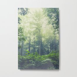 SummEr grEEn Metal Print