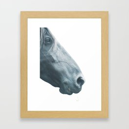 Horse head - fine art print n° 2, nature love, animal lovers, wall decoration, interior design, home Framed Art Print