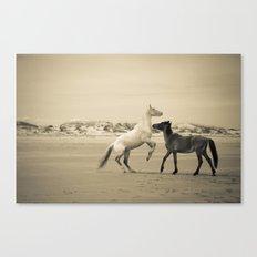 Wild Horses 2 Canvas Print