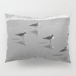 Reflections Pillow Sham