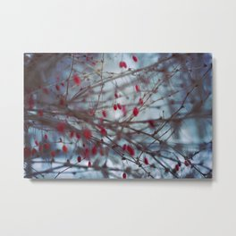 berry dream Metal Print