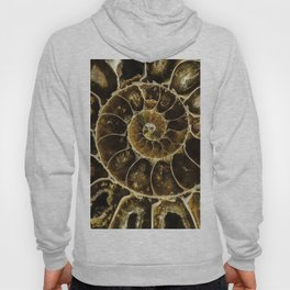 Detailed Fossil Hoody