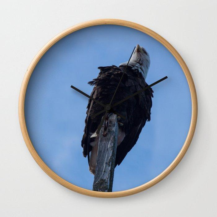 Bald Eagle Photography Print Wall Clock