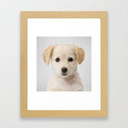 Golden Retriever Puppy - Colorful Framed Art Print