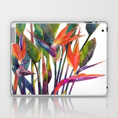 The bird of paradise Laptop & iPad Skin
