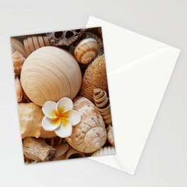 Sea shells ll Stationery Cards