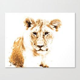 Animals Of The Rainbow Lion Canvas Print
