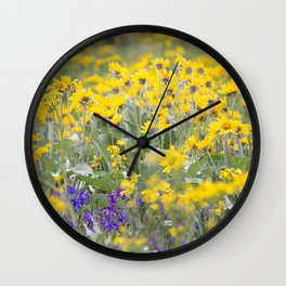 Meadow Gold - Wildflowers in a Mountain Meadow Wall Clock