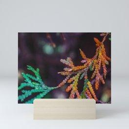 Changing Colors Mini Art Print