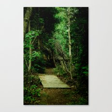 Entrance - color Canvas Print