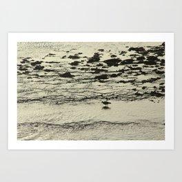 Curlew Wader Bird Rocky Seashore Art Print