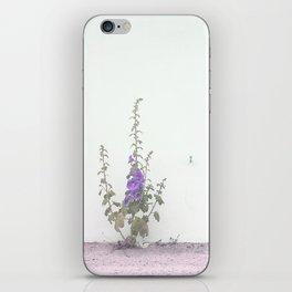 ventana iPhone Skin