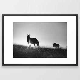 Romania memories Framed Art Print